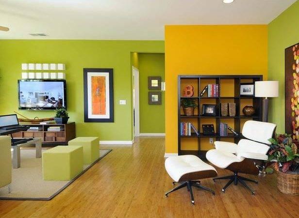 Accent Color Walls Living Room Home Decorating Ideas