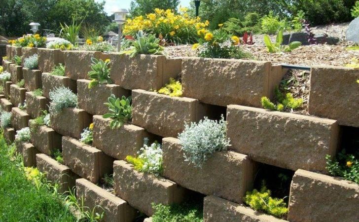 Add Space Creative Vertical Gardens Part