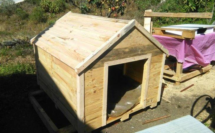 Addition Diy Dog House Out Pallets Pallet Plans