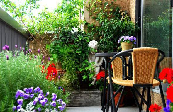 Alan Titchmarsh Tips Growing Plants Balconies Garden Life