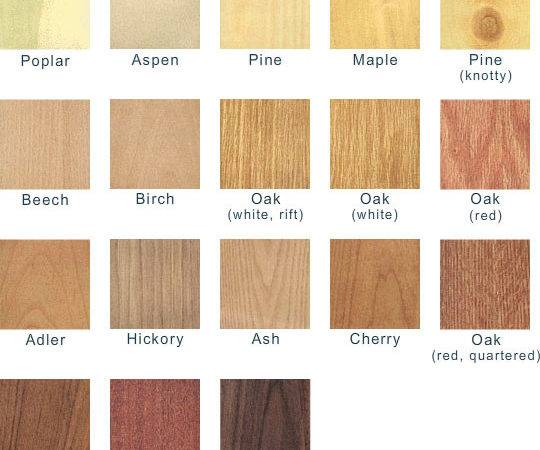 All Different Types Wood Best Car Reviews