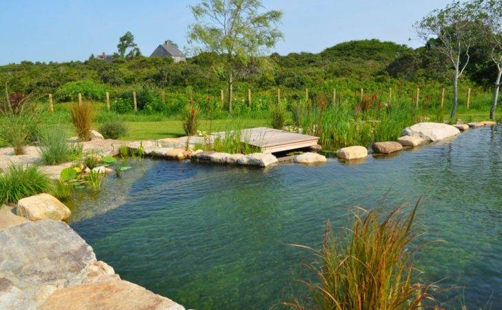 All Natural Swimming Pools