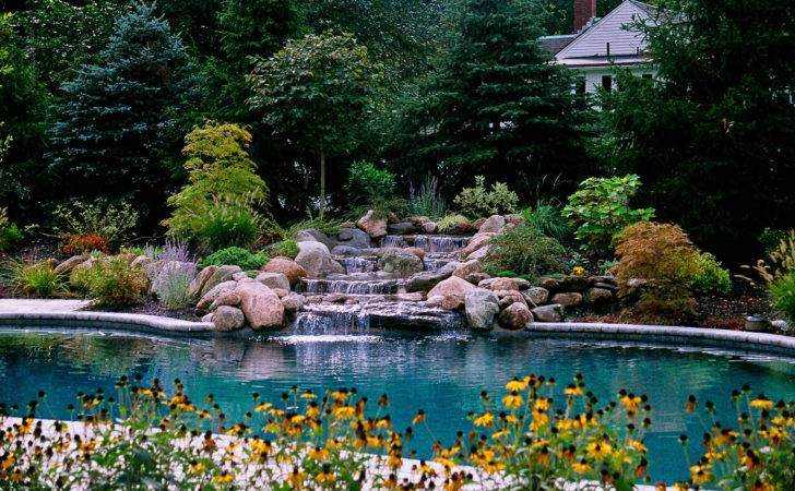 Amazing Backyard Pool Designs Landscaping Pools Tips Your Home
