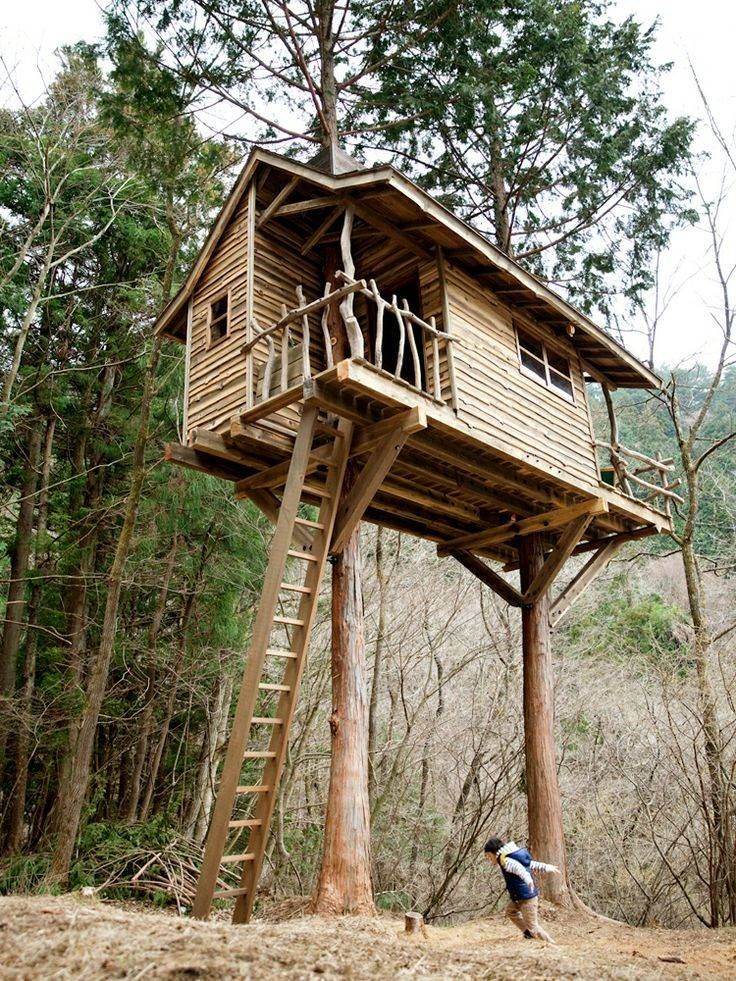 Amazing Two Tree Treehouse Rustic Ship Lap Siding Natural