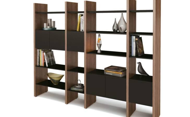 Appealing Dvd Storage Cabinet Oak Wood Shelving Systems