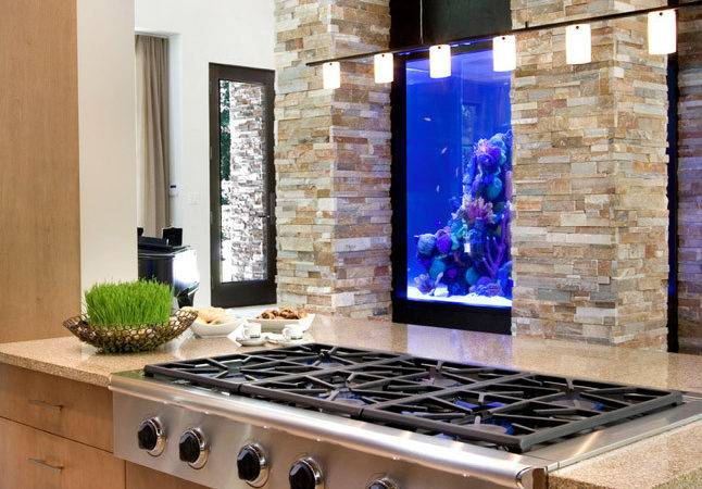 Aquarium Think Again Unusual Places Your Home Fish Tanks