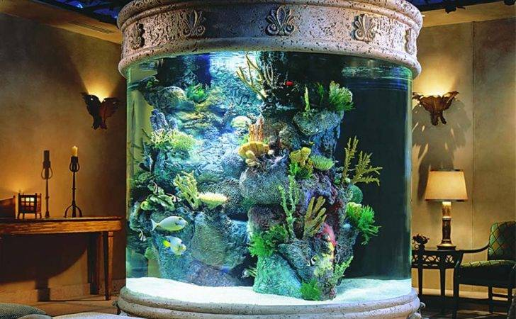Aquarium Your House Decoration Luxury Busla Home Decorating