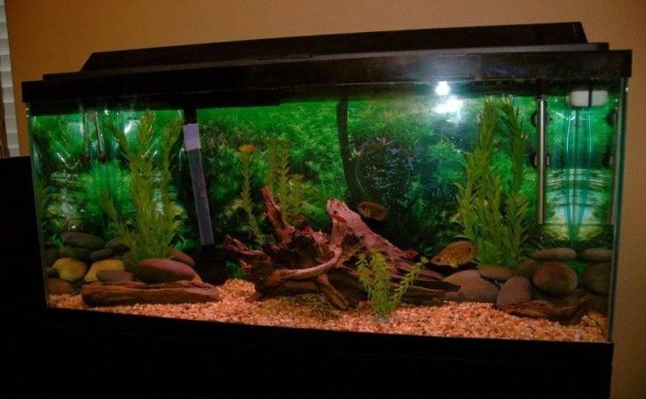 Aquariums Tropical Fish Tank Sea Aquarium Terrarium