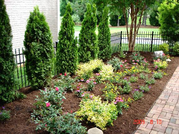 Arborvitae Landscaping Landscapes Planning Design Llc
