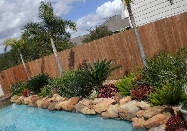 Around Pool Landscaping Ideas Tropical