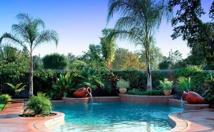 Around Pool Tropical Landscaping Lush