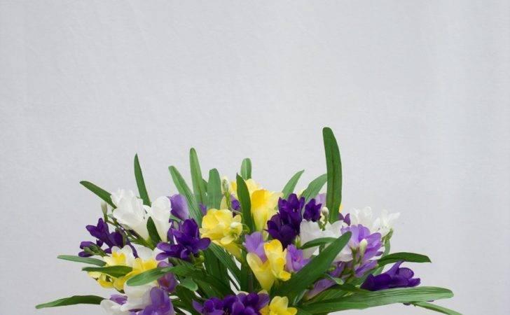 Arrangements Jackie Purple Yellow Freesia Arrangement