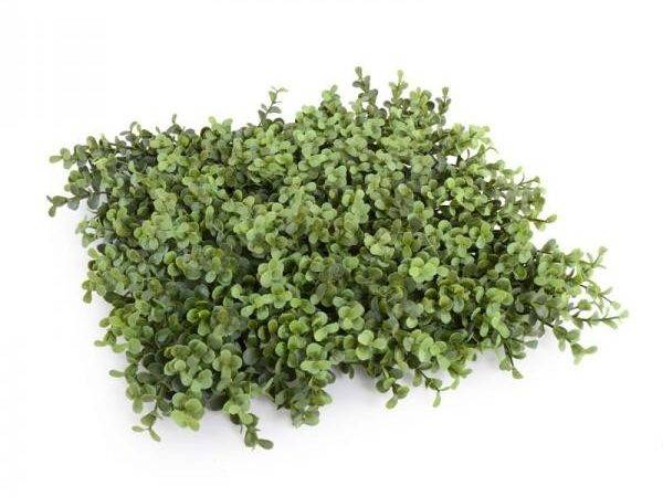 Artificial Boxwood Hedge Panels Certificate