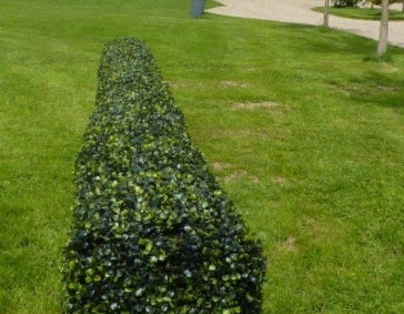 Artificial Boxwood Hedge Topiary Pinterest