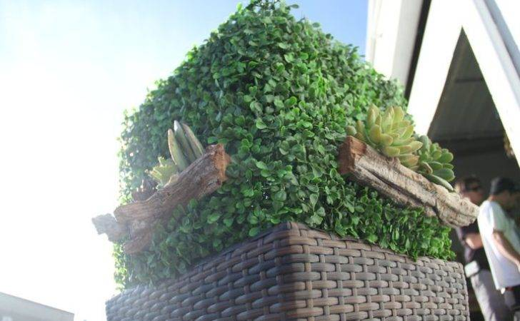 Artificial Boxwood Hedge Walls Panels Pinterest