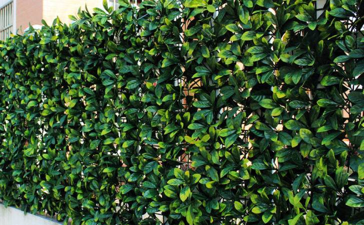 Artificial Boxwood Osmanthus Leaf Ivy Fence Hedges Topiary Panels