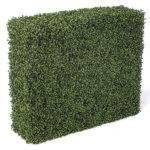 Artificial Boxwood Privacy Hedge Sided