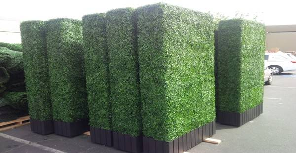 Artificial Hedge Panel Rentals Large Events