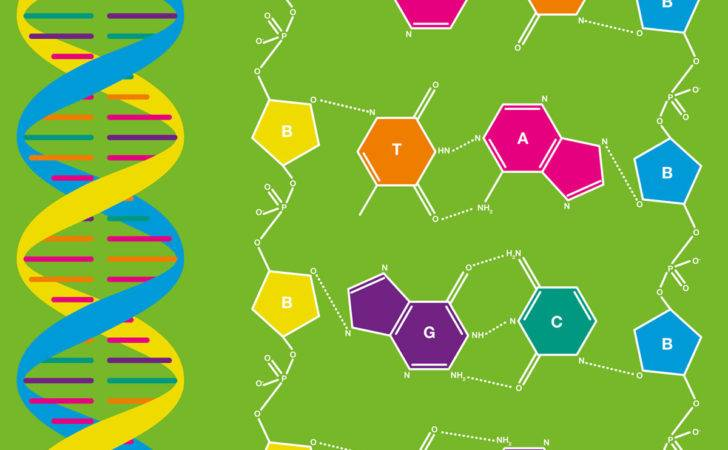 Atomic Printworks Dna Create Products