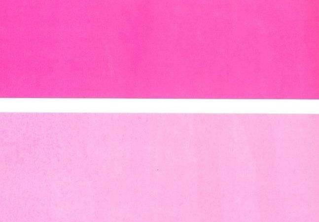 Back Monochromatic Pink Room