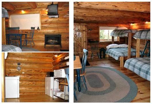 Back Small Cabin Decorating Ideas Design Plans Modern Living