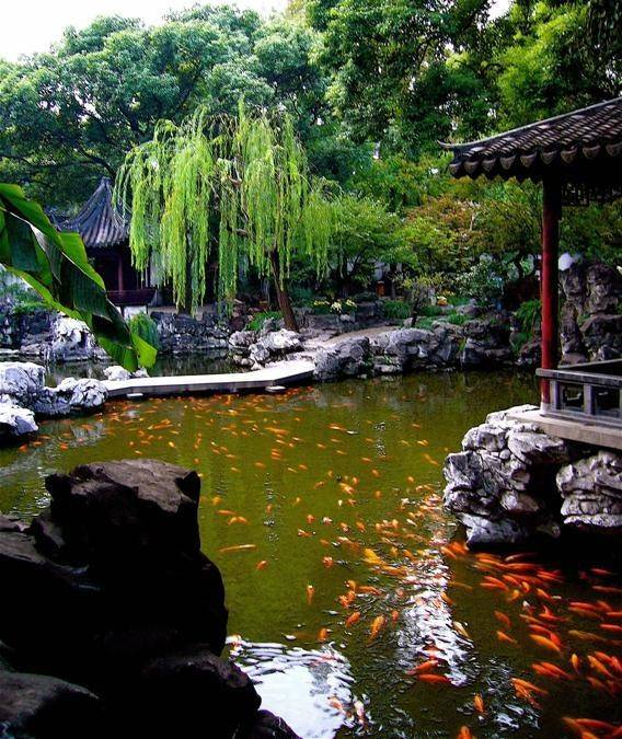 Backyard Chinese Garden Becuo