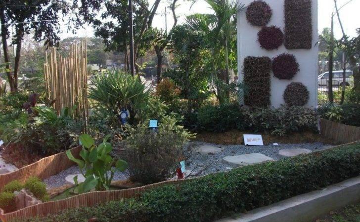 Backyard Fish Pond Philippines Vertical Garden Landscape