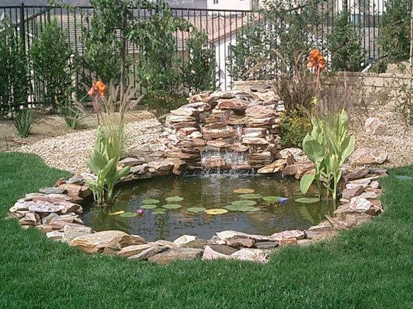 Backyard Koi Fish Pond Ponds Residential Construction