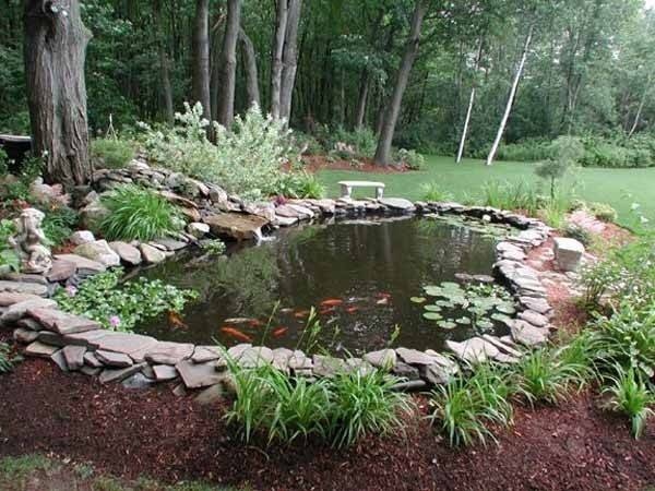 Backyard Koi Pond Ideas Ludetz