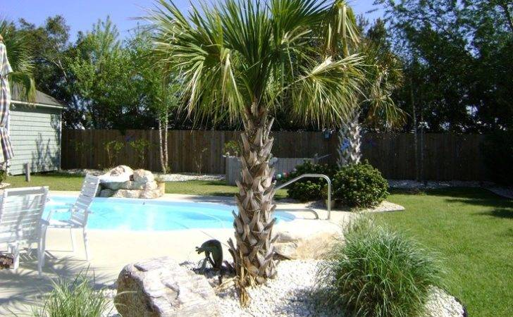 Backyard Landscaping Around Pool Pools Pinterest