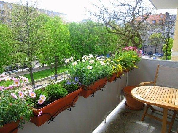 Balcony Design Plants Planting Functional Flower Pots