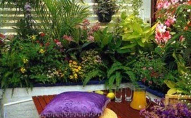 Balcony Garden Stone Floor Ornamental Plants Modern