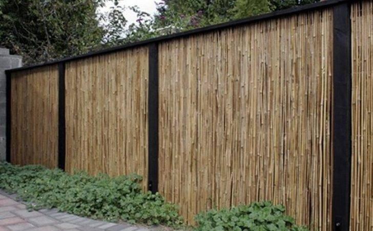 Bamboo Fence Designs Home Design Interior Decor