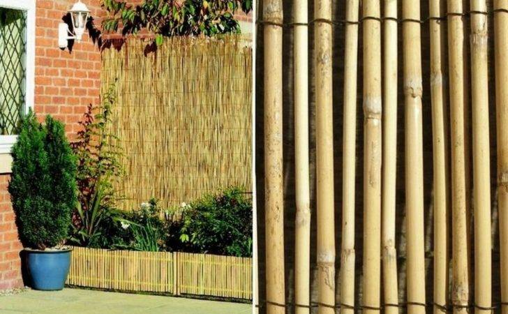Bamboo Fence Ideas Make Your Home More Elegant Unique
