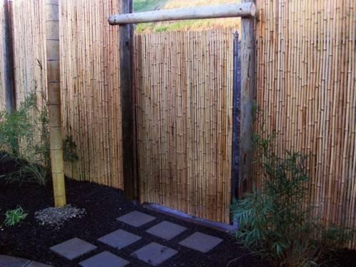 Bamboo Fence Ideas Provided Workshop