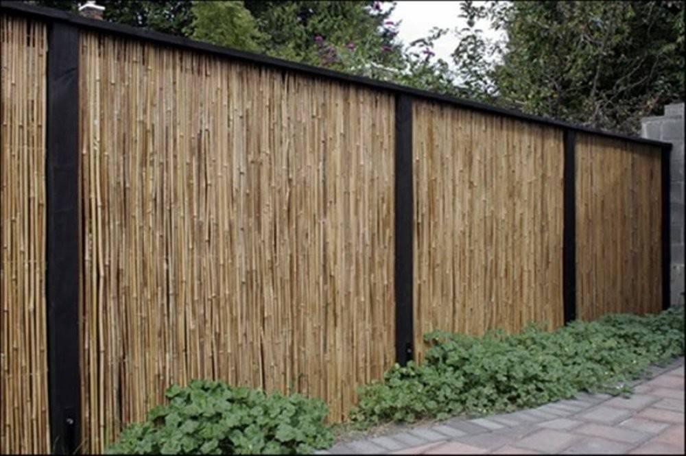 Bamboo Fence Ideas