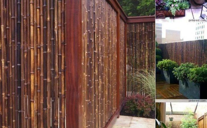 Bamboo Fencing Flooring Ideas Home Pinterest