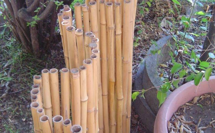 Bamboo Fencing Rolls Wall Coverings Ccacademy Ideas