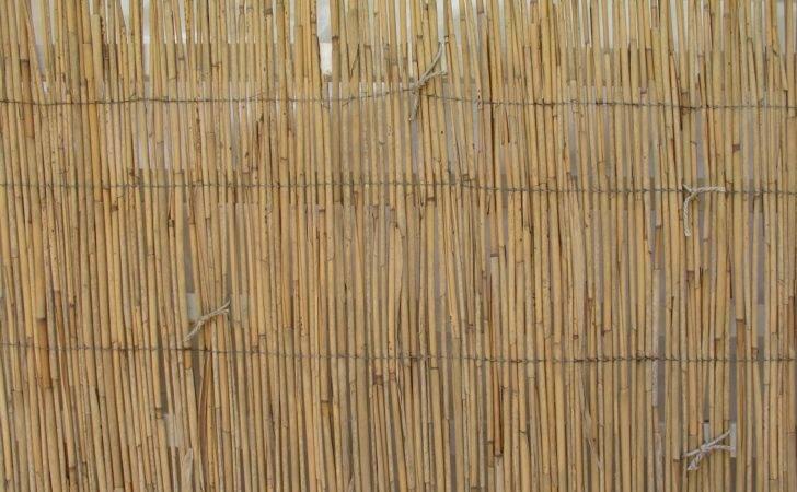 Bamboo Grove Fence