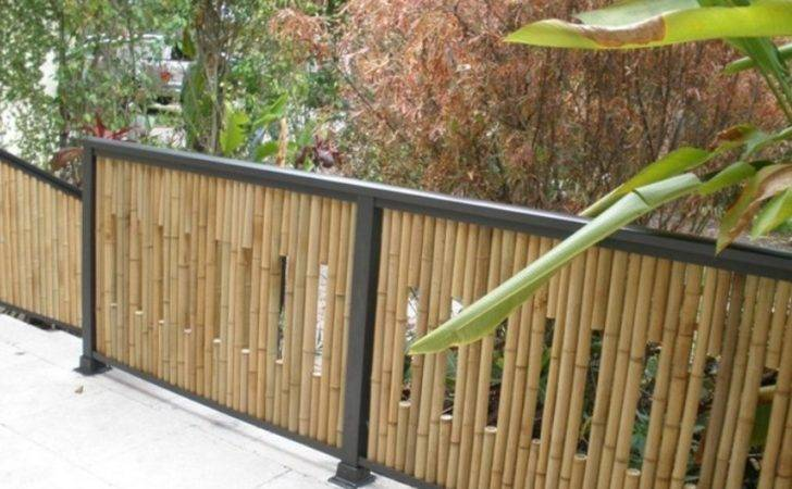 Bamboo Privacy Fence Ideas Well Designs Besides