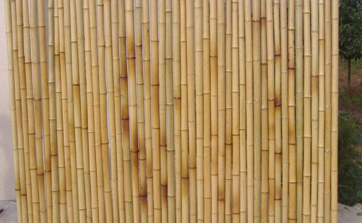Bamboo Wall Panels Rolled Fence