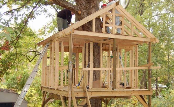 Basic Tree House Plans Treehouse Designs