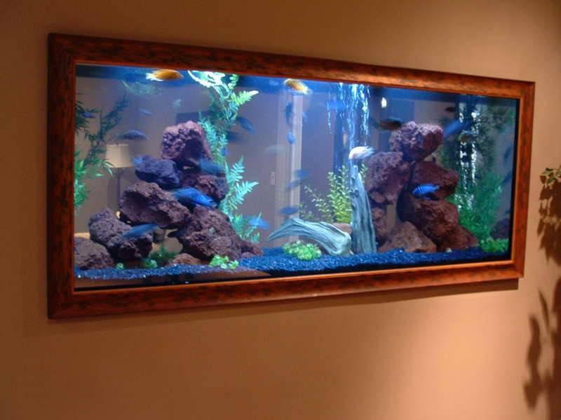 Beautiful Aquarium Decorations Ideas