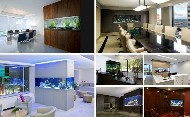 Beautiful Home Office Aquariums Cool Fish Tanks Your