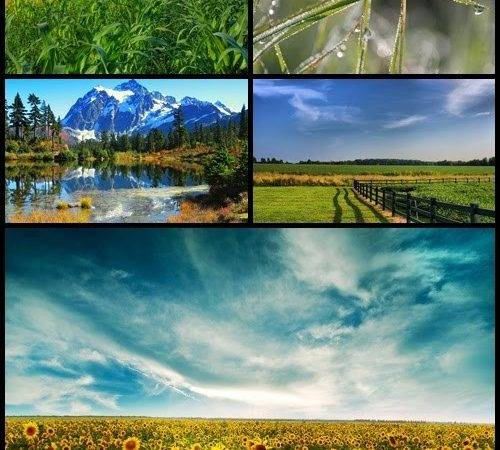 Beautiful Nature Collection