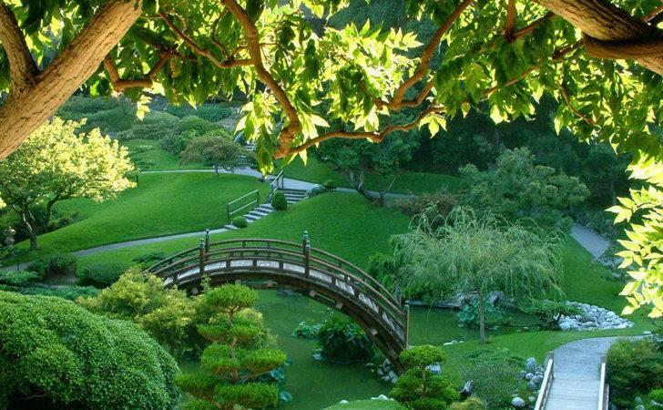 Beautiful Nature Japanese Green Garden