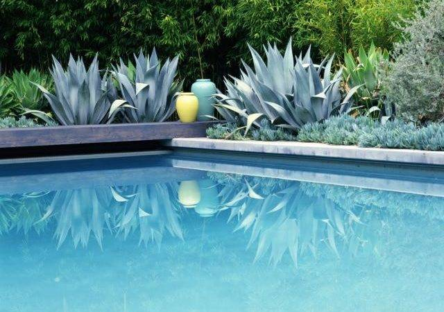 Beautiful Poolside Succulent Landscaping Credit Getty