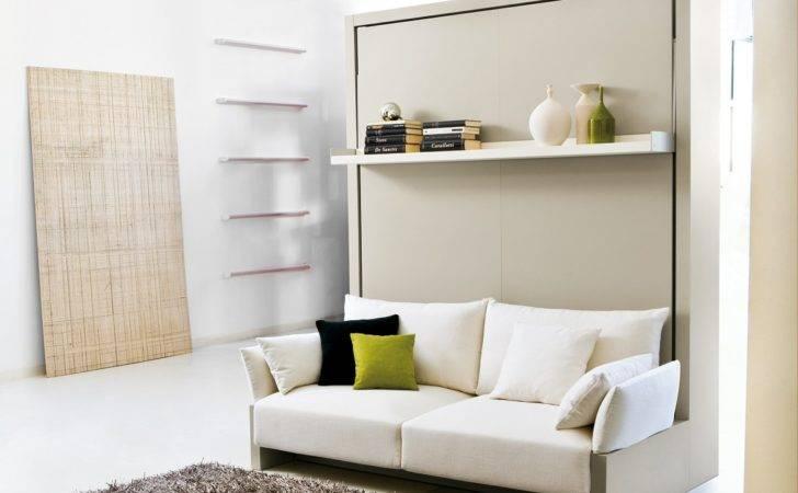 Bedroom Murphy Bed Ikea Price Plywood Wall Mirrors Floor Lamps