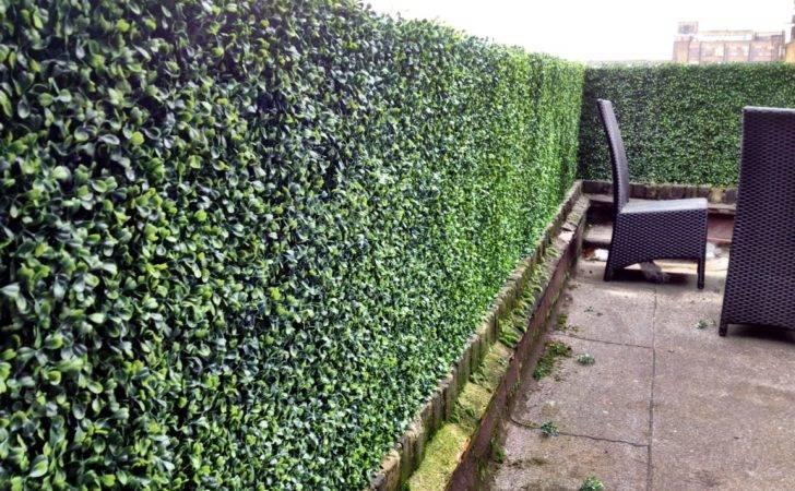 Bespoke Artificial Boxwood Hedge Installation