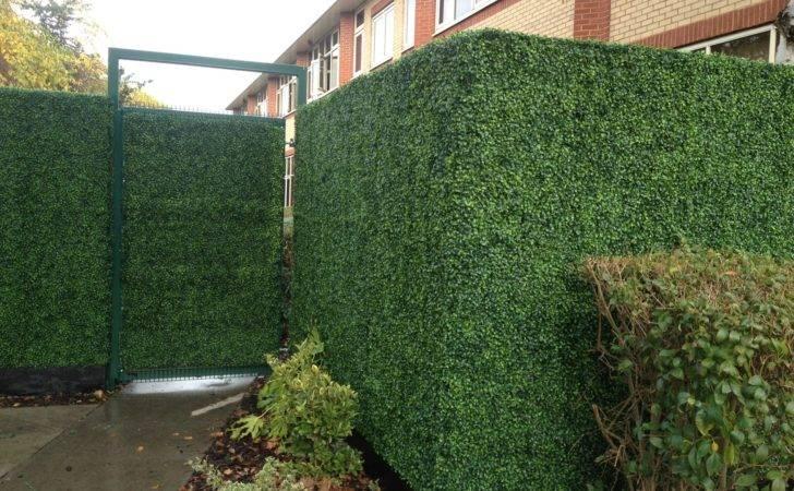 Bespoke Artificial Boxwood Hedge Replica Plants